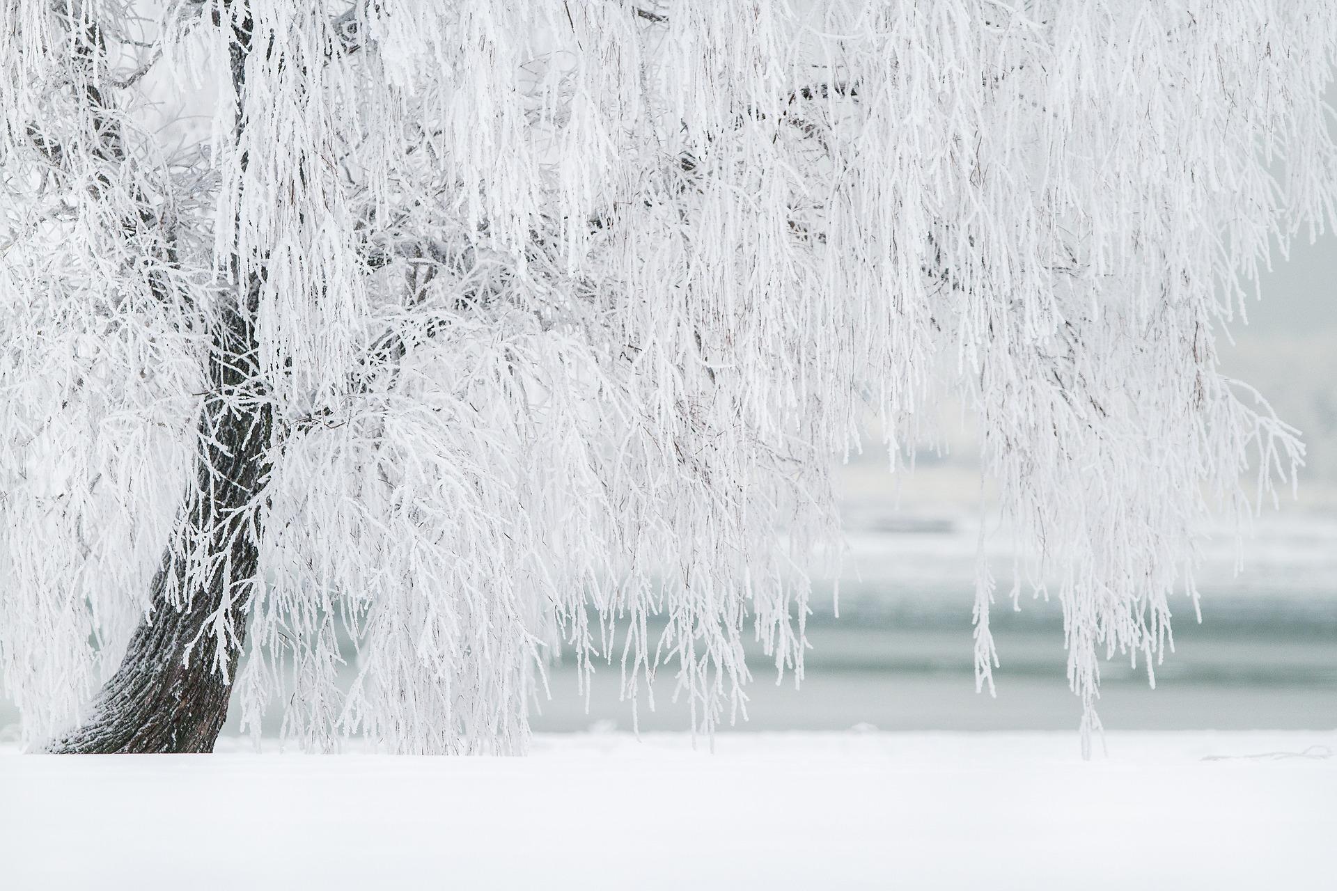 Froid climat cause externe de la maladie