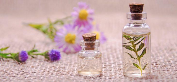 Les plantes, alliées incontournables de vos rituels Do In