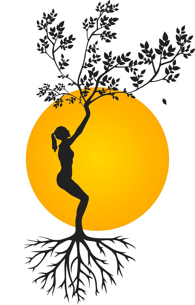 arbre-racines-shiatsu-nancy