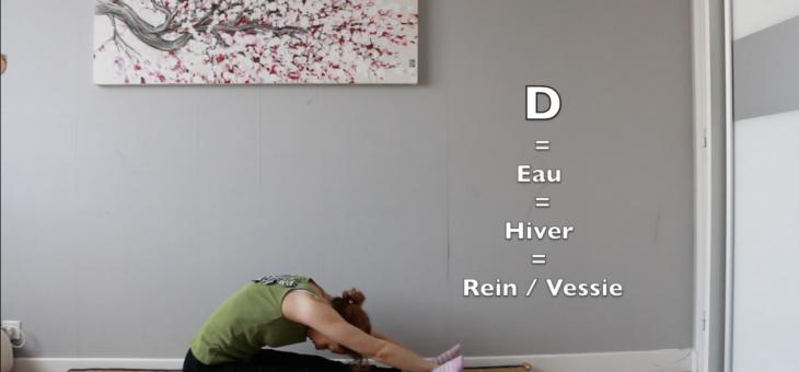 Zen Shiatsu : exercices visualisés de bases de Masunaga (Makkô Hô)